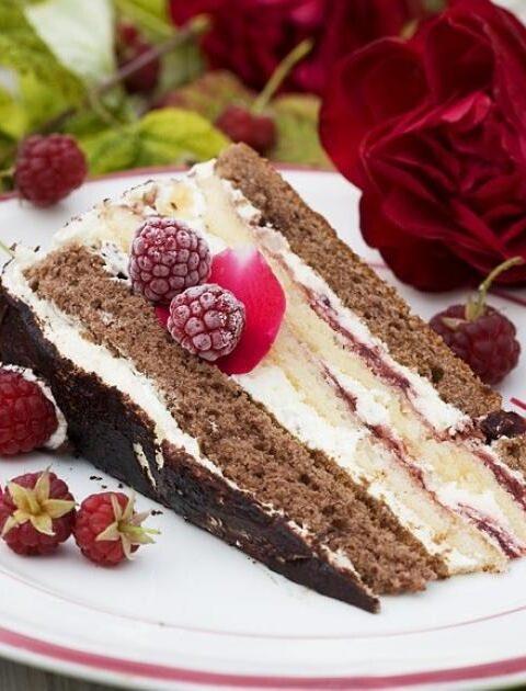 Himbeersahne-Torte mit Schokobiskuit